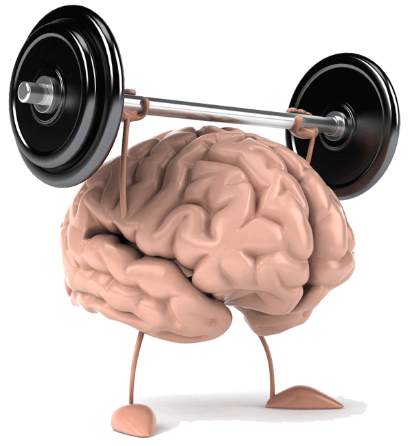 Exercise Your Brain ... Brainpower ... Click Here