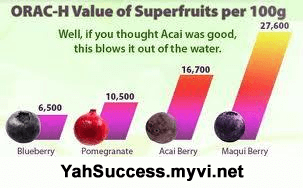 Maqui Berry ReviewsMaqui Berry High ORAC Value Antioxidants Fight Free Radicals